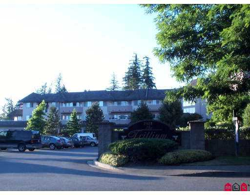 "Main Photo: 110 21975 49TH AV in Langley: Murrayville Condo for sale in ""Trillium"" : MLS® # F2615279"