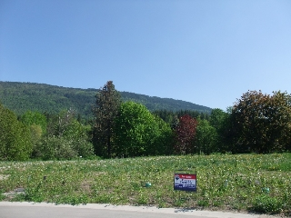 Main Photo: 5440 73 Avenue, NE in Salmon Arm: Canoe Land Only for sale : MLS(r) # 10111566