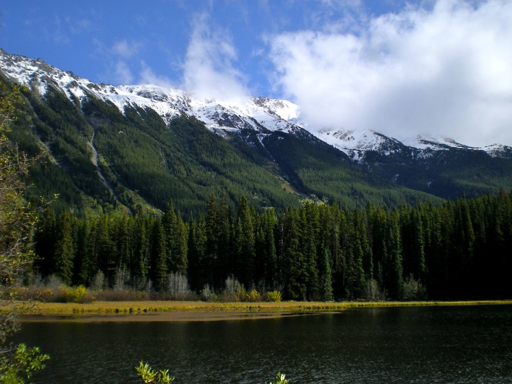 Main Photo: Mead Lake: Home for sale (Whistler)