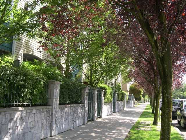 "Photo 10: # 309 3278 HEATHER ST in Vancouver: Cambie Condo for sale in ""HEATHERSTONE"" (Vancouver West)  : MLS(r) # V971795"