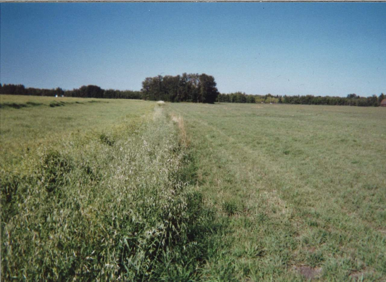 Photo 3: 51515 RGE RD 261 RD: Rural Parkland County Rural Land/Vacant Lot for sale : MLS(r) # E4017614