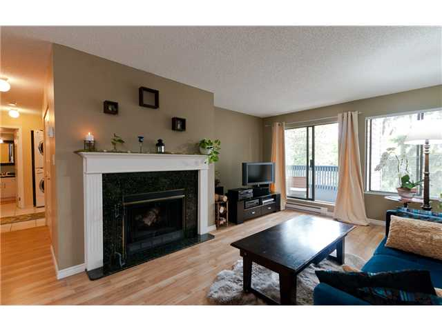 "Main Photo: 203 8400 ACKROYD Road in Richmond: Brighouse Condo for sale in ""LANSDOWNE GREENE"" : MLS® # V1012084"