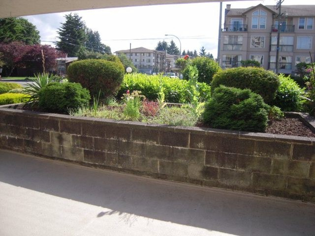 "Photo 18: 133 31955 OLD YALE Road in Abbotsford: Abbotsford West Condo for sale in ""Evergreen Village"" : MLS® # F1314599"