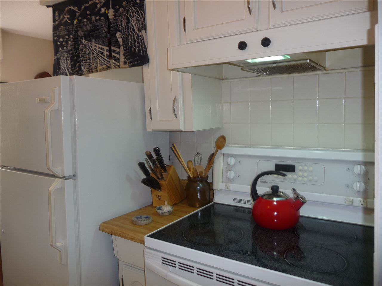 Photo 3: 103 2910 ONTARIO STREET in Vancouver: Mount Pleasant VE Condo for sale (Vancouver East)  : MLS® # R2058838