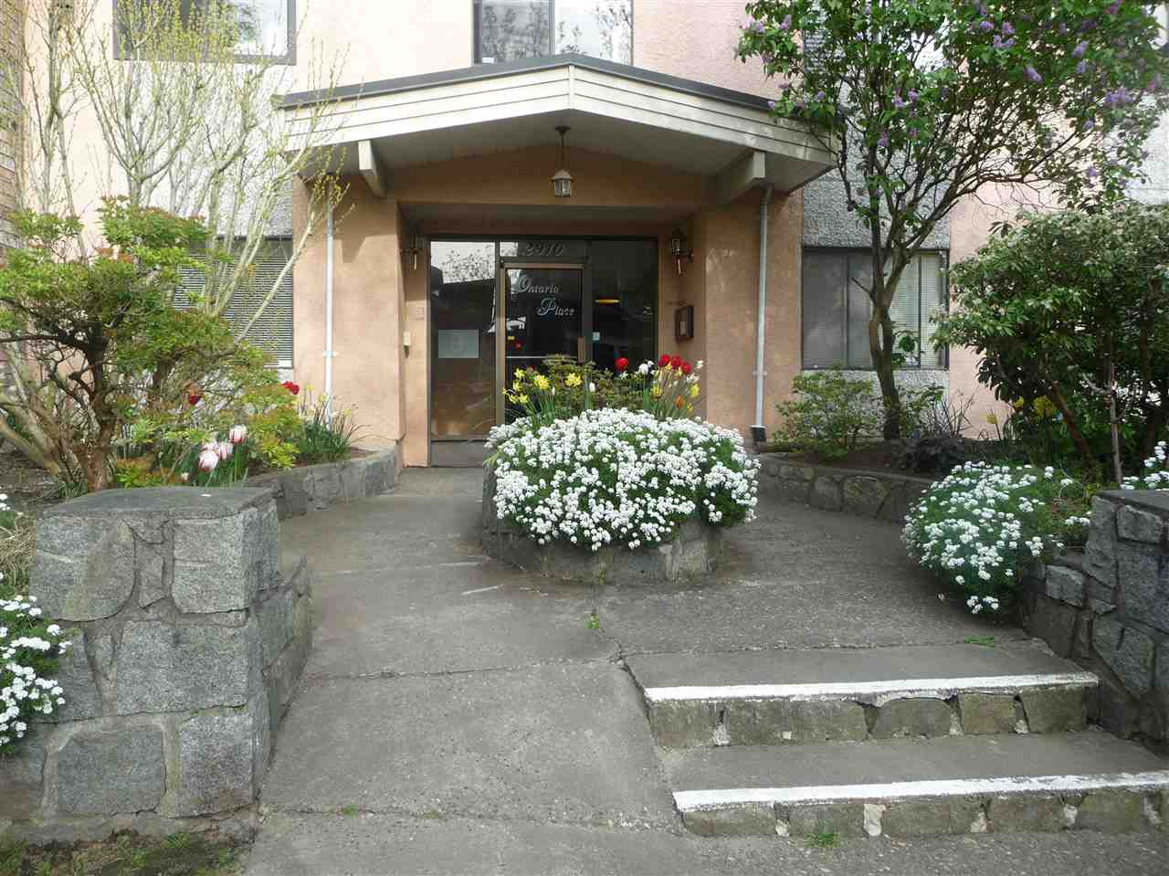 Main Photo: 103 2910 ONTARIO STREET in Vancouver: Mount Pleasant VE Condo for sale (Vancouver East)  : MLS® # R2058838