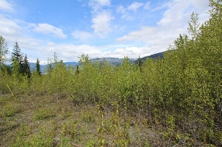 Main Photo: Lot 81 Sunset Drive: Eagle Bay Land Only for sale (Shuswap)