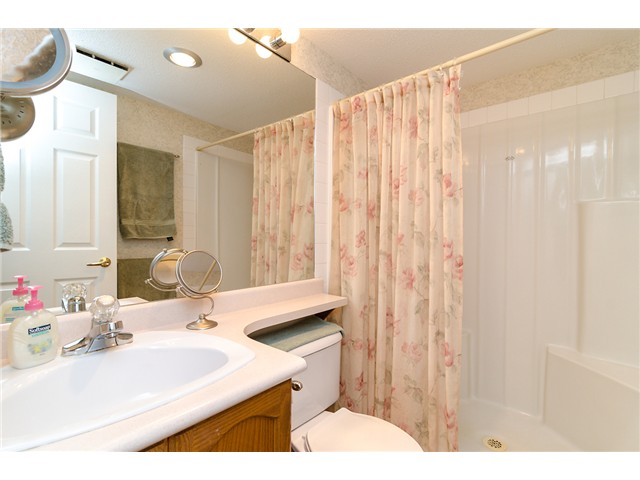 Photo 16: # 408 78 RICHMOND ST in New Westminster: Fraserview NW Condo for sale : MLS® # V1034813