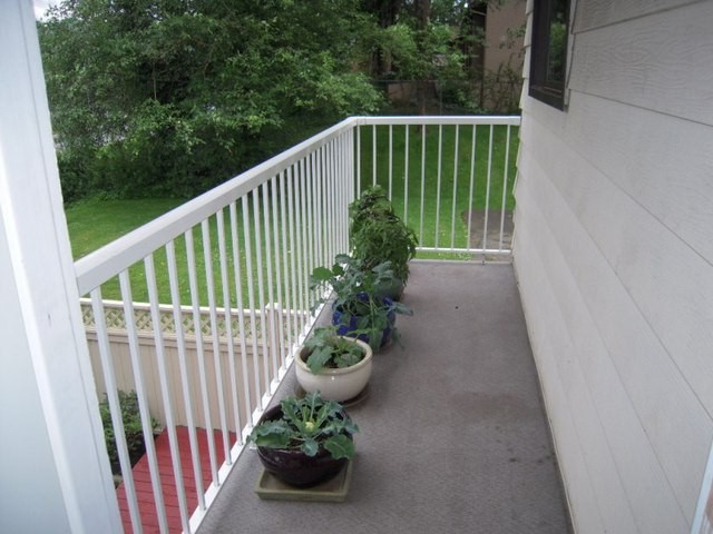 Photo 13: 6 3075 TRETHEWEY Street in Abbotsford: Abbotsford West Townhouse for sale : MLS(r) # F1315428
