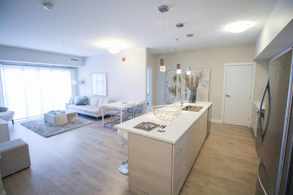Gorgeous open concept with 9' ceilings (10' on penthouse floor)