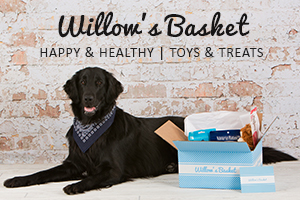 Willow's Basket