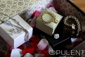 The Opulent Box