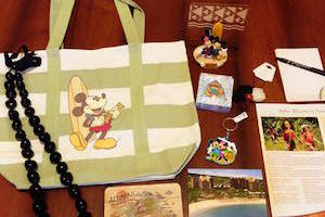 Disney Monthy Subscription Box