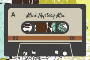 Mini Mystery Mix Fashion Box by Via 74