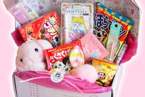 LoveJojo Kawaii Subscription Box
