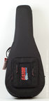 Gator GL-Classical Gig Bag Case