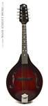 Summit A100C Mandolin