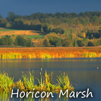 Horicon Marsh at twilight