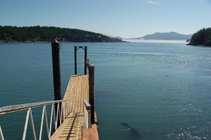 Orcas dock