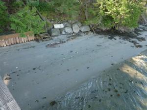 Henry Island Sandy Beach