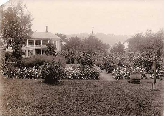 The view of the rear gardens and rain barrel in 1908.