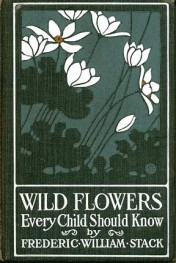 wildflowers-cover