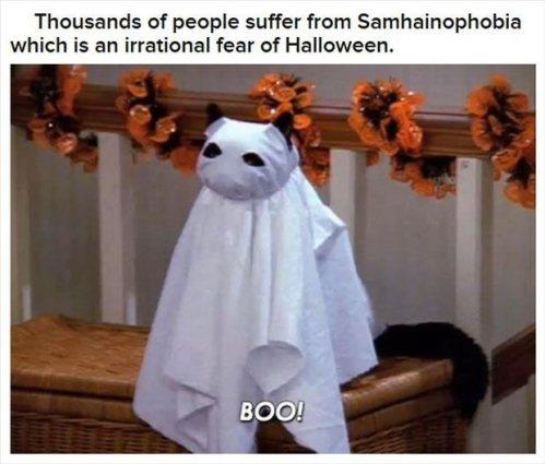 interesting-halloween-facts-17