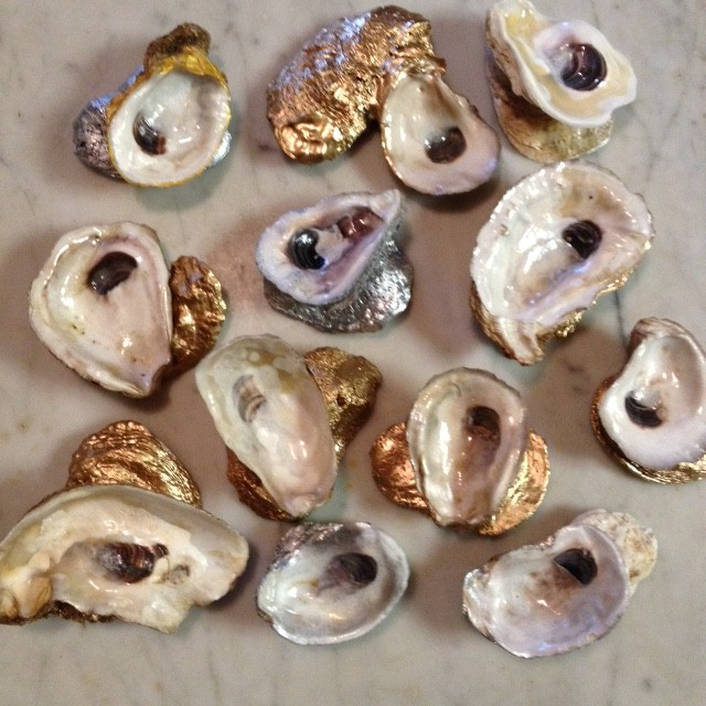 Group Of Oysters 11