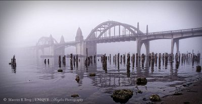 bridgeinfoglogo
