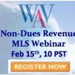 Webinar - non dues revenue