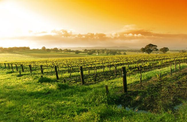 winetourmap_hdr