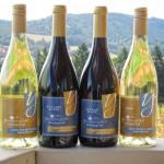 wine_bottles-lg