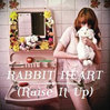Rabbit Heart - Florence & the Machine, Single slick