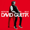 David-Guetta---Nothing-But-The-Beat