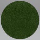 Grass + 'Thumbnail'