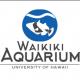 Waikiki Aquarium World Oceans Month's LEAHI Display and LEGO Build