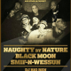 Naughty By Nature's 25th Anniversary Tour at Stage 48 on 4/29