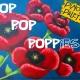 Pop Pop Poppies - Painting