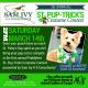 St. Pup-Tricks Costume Contest | Irish 31 | Benefitting the Animal Coalition of Tampa