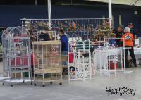 The OKC Fall Tropical Bird & Supply Mart