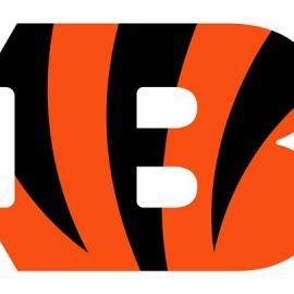 Cincinnati Bengals vs. Baltimore Ravens
