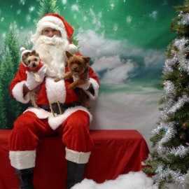 Operation Kindness Offers Pet Photos with Santa