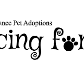 Second Chance Pet Adoptions Racing for Rescues 5k