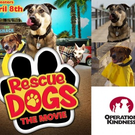 Operation Kindness Adoption Event at Rescue Dog Premiere