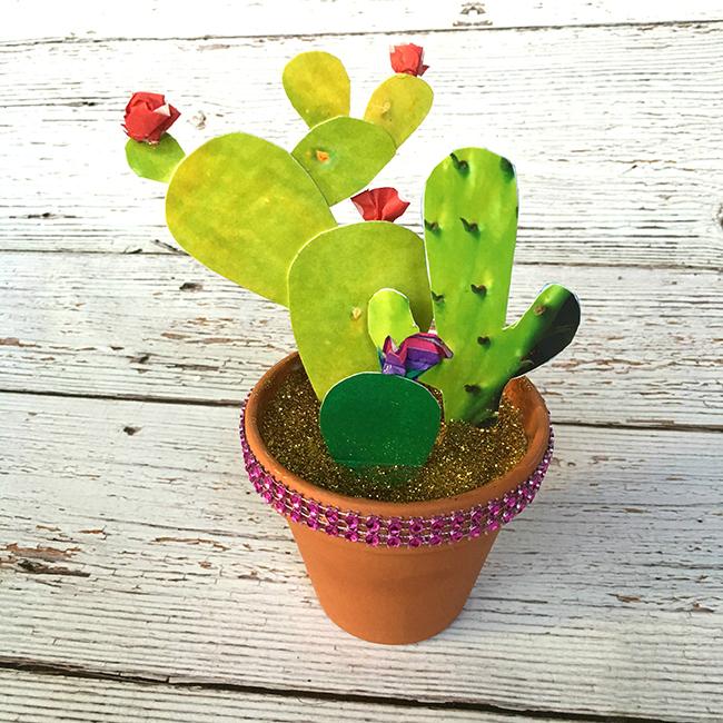 Photo Cactus Garden