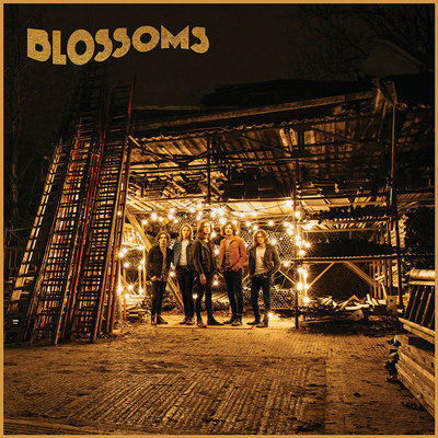 Blossoms art