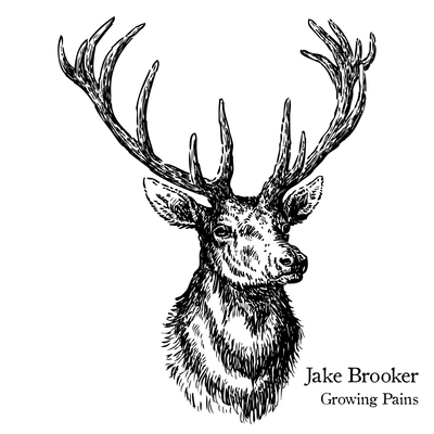 Jake brooker album cover