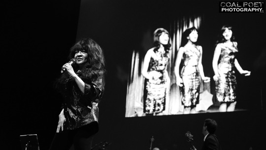 Ronnie spector 8