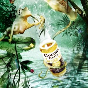Corona rane