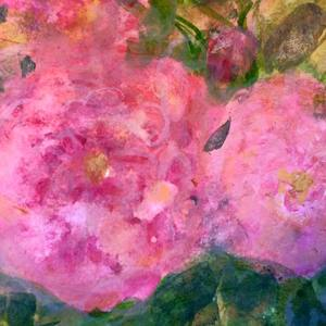 Rose de l arborete aase birkhaug art monaco