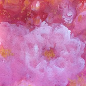 Rose de l arborete i  1040